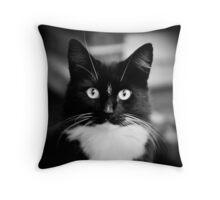 Mr stray cat.. Throw Pillow