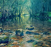 The Mysterious River Lyvennet by jaks