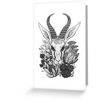 Springbok & Fynbos Greeting Card