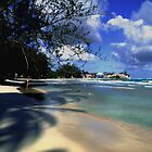 Landscape Barbados Beach Scene by Peter  Downing