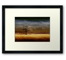And the rains came..... Framed Print