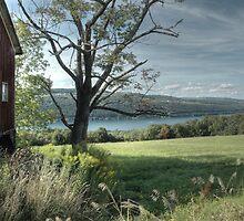 Overlooking Keuka by MShelsby