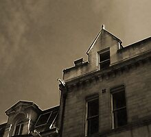 The Roof Has Eyes by Lyonesse