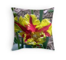 Yellow & Red Parrot Throw Pillow