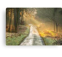 The Road Home Metal Print
