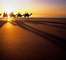 Broome camel train. by Brian Downs