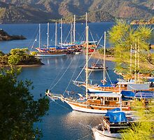 Gulets on the Turquoise Coast by InterfaceImages