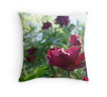 Ragged Beauty :) Throw Pillow