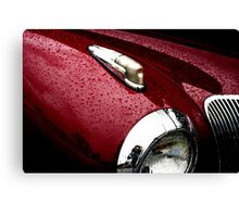 Droplets on Lincoln Canvas Print