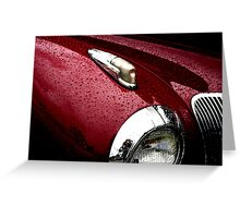 Droplets on Lincoln Greeting Card