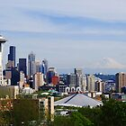 Seattle Panoramic by Tori Snow