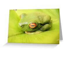 Contrasting Camouflage Greeting Card