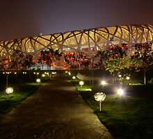 North side of Beijing's Bird's Nest by Douglas M. Paine