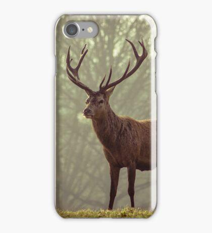 Majestic Deer  iPhone Case/Skin