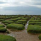 Hunstanton, Norfolk by SusanAdey