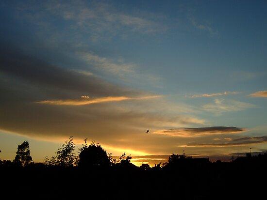 Summer Sunset in a London Suburb (1) by Themis