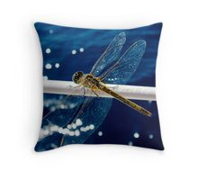 Dazzle-fly Throw Pillow