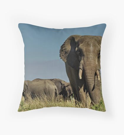 Watching the watcher Throw Pillow