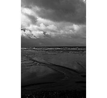 Sea snake Photographic Print