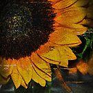autumn by colleen e scott