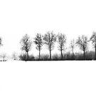 Black & White and Monochrome    Silvia Ganora by Silvia Ganora