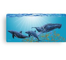Humpback and Dolphins Canvas Print