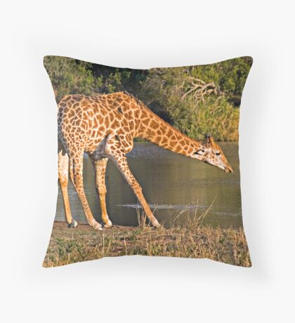 Giraffe Drinking Throw Pillow