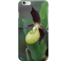 Ladys slipper Orchid iPhone Case/Skin