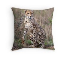 Spring to action ! Throw Pillow