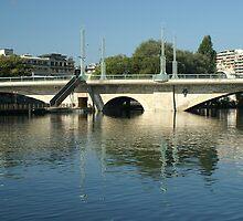 Coulou bridge by Fran E.