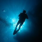 Diver silhouette by cooperscuba