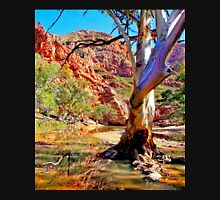 Ellery Creek 2, Northern Territory Unisex T-Shirt