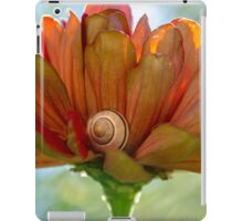 caught napping iPad Case/Skin