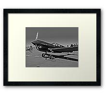 P-40 WARHAWK ON STATIC DISPLAY Framed Print