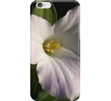 Last Blush of Spring iPhone Case/Skin