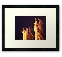 heat! Framed Print