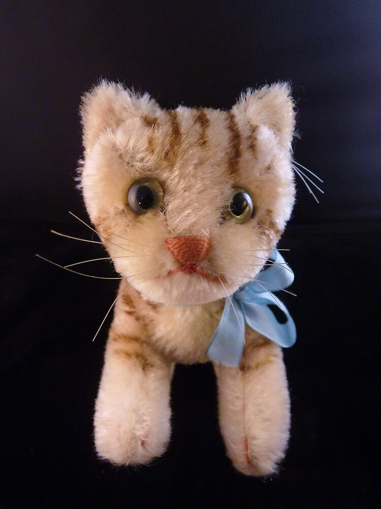 Susie Cat by Barbara Morrison
