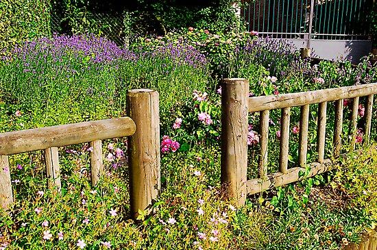 Roadside garden, La Londe, France by triciamary