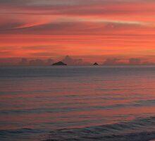 Sunrise at Matata 08 by Whole Shot  Photography