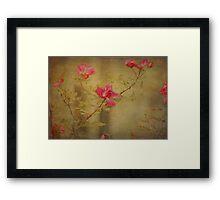 Vintage Rosebush Framed Print