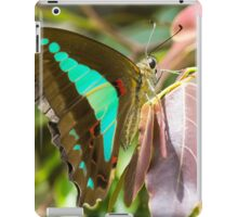 Blue Triangle Butterfly iPad Case/Skin