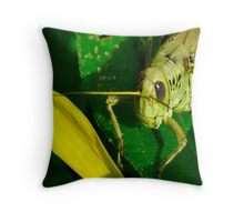 No Tobacco Throw Pillow