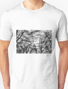 Sun, Clouds, and Winter Trees Unisex T-Shirt