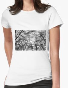 Sun, Clouds, and Winter Trees Womens Fitted T-Shirt