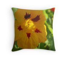 Nasturtium Glory Throw Pillow