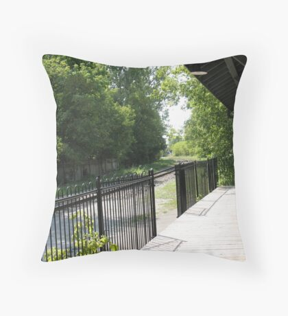 Packed and ready to move on Throw Pillow