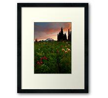 Paintbrush Sunset Framed Print