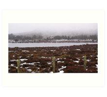 Snow on the lake 3 Art Print
