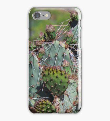 Cactus  iPhone Case/Skin