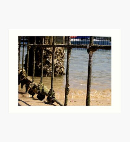 Barred - Harbord Beach, Sydney, NSW Art Print